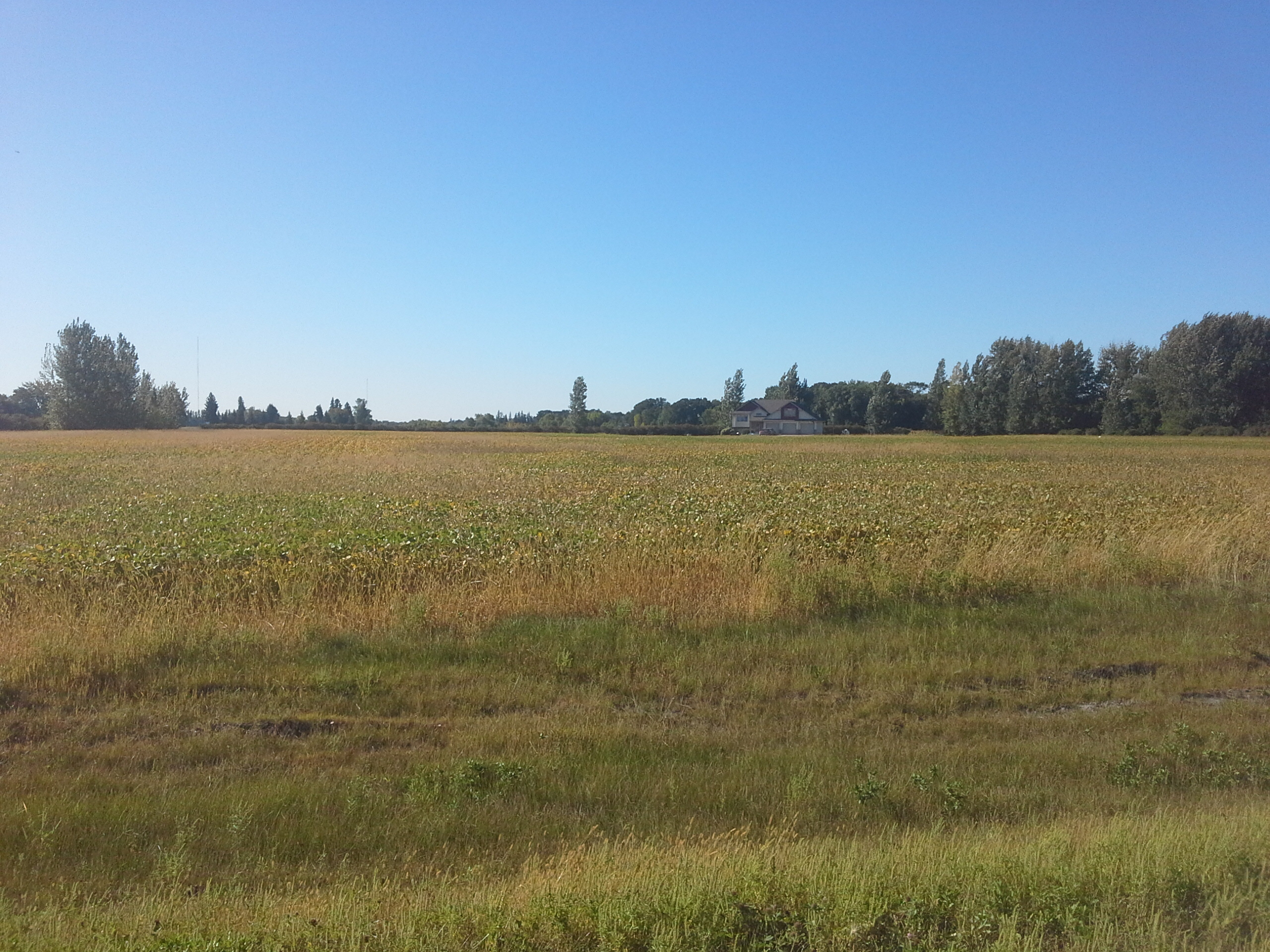 Homes in East Grand Forks ND